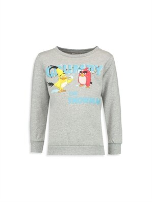 Angry Birds Sweatshirts - LC WAIKIKI