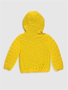 %100 Poliamid %100 Polyester %100 Polyester Orta Mont Erkek Bebek Mont